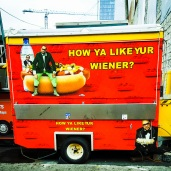 pictures of nashville tennessee hot dog van travel solo usa